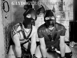 IMG_0150N&B