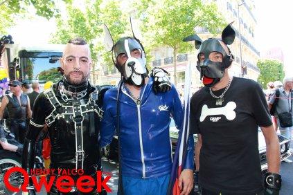 Qweek_IMG_0489TAG