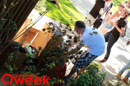 Qweek_IMG_0725TAG